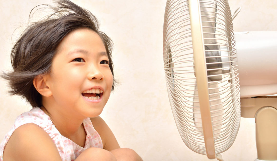 Keep Your Home Cool Without Using an AC